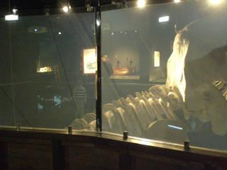 Vidrios de privacidad Musei in stile eclettico
