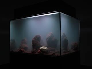 Odd yet extremly beautiful の Aquarium Architecture モダン