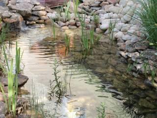 VIVSA. VIVIENDA SANA Pool