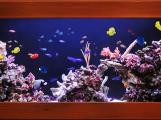 Aquarium in the city トロピカルデザインの リビング の Aquarium Architecture トロピカル