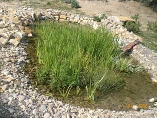 Garden by Studio Tecnico Progettisti Associati Ing. Marani Marco & Arch. Dei Claudia