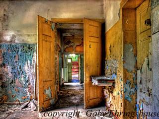 Gaby Ehringshausen Rustic style windows & doors