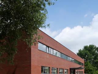 Neues Trikot für alte Sporthalle - Grundinstandsetzung der Sporthalle der Mildred-Harnack-Oberschule in Berlin-Lichtenberg:  Schulen von Maedebach & Redeleit Architekten
