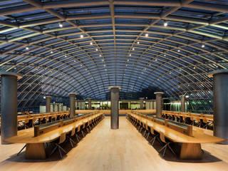 Joe and Rika Mansueto Library:  Schulen von L-Plan Lichtplanung