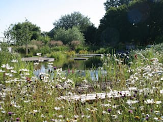 BIOTOP - The Garden of Eden BIOTOP Landschaftsgestaltung GmbH Garden Swim baths & ponds