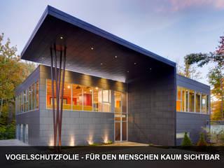 Transparente Folien retten Vögel:   von TONI Bird Control Solutions GmbH & Co. KG