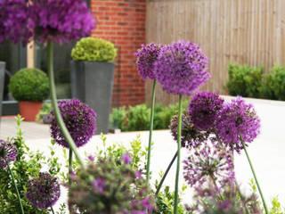 Town Garden Design Modern garden by Bea Ray Garden Design Ltd Modern