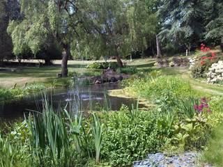 Water Garden Cool Gardens Landscaping Jardin classique