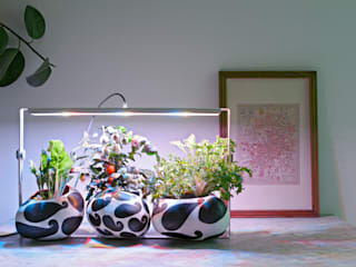 eclectic  by Bulbo®, Eclectic