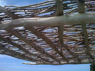 pergola en bois flotté en corse:  de style  par deco-nature