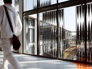 Restructuration et extension du Lycée Albert Einstein à Bagnols-sur-Cèze - Associé à François Privat, Architecte NBJ Architectes Ecoles