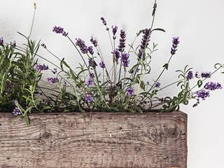 Blumenkasten von edictum - UNIKAT MOBILIAR Rustikal