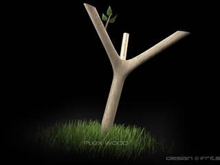 Roche Bobois - Plexiwood:  de style  par FRITSCH-DURISOTTI