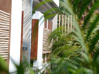 de vgzarquitectura y diseño Tropical