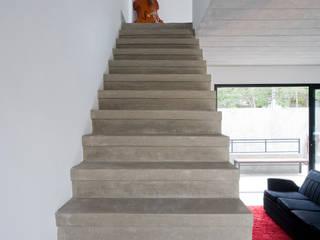 modern  oleh Casa 14, Modern