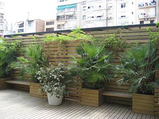 """Terraza en el """"eixample"""": Jardines de estilo  de Mariona Soler"""