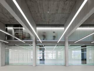 Modern Gym by asieracuriola arquitectos en San Sebastian Modern