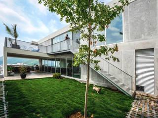 Casa IPE: Casas de estilo moderno por P+0 Arquitectura