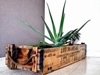 Jardinière à plantes grasses:  de style  par R'HOME Style
