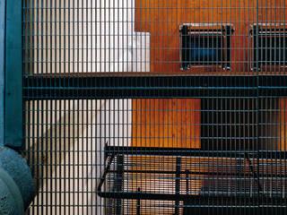 Verticale, Trasparente: Ingresso & Corridoio in stile  di Luigi Ferrario