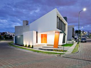 NonWarp Modern houses