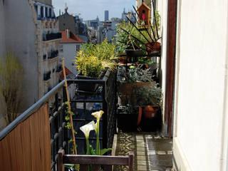 Appartement Bohème: Terrasse de style  par Harfang Decoration