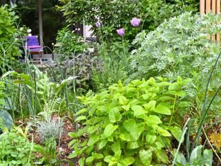 Garden by Nelka