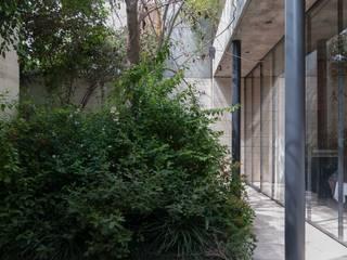 Jardines de estilo  por Ambrosi I Etchegaray, Minimalista