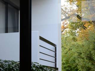 Puertas y ventanas de estilo moderno de Herzog-Architektur Moderno