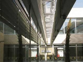 Vista del patio central:  de estilo  de Argola Arquitectos