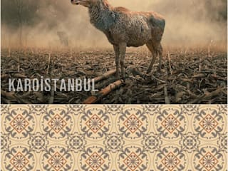 Karoistanbul Cement Tiles – Surrealistic Colors... Surrealistic Designs and Tiles:  tarz