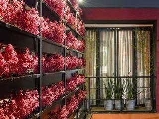 Boutique de Arquitectura (Sonotectura + Refaccionaria) Jardines de estilo moderno