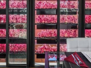 Boutique de Arquitectura (Sonotectura + Refaccionaria) Pintu & Jendela Modern