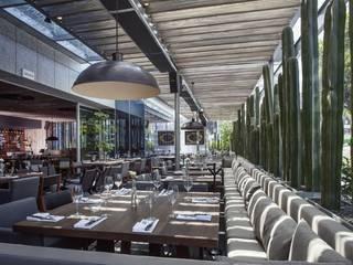 Sonora Grill Prime Insurgentes de Central de Arquitectura