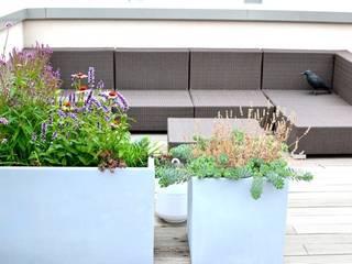 Balcony, veranda & terrace by Nelka