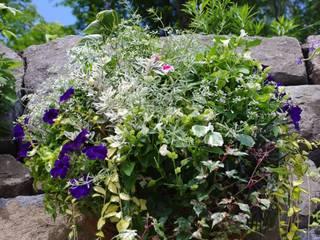 Green Style Forest Garden Plants & flowers