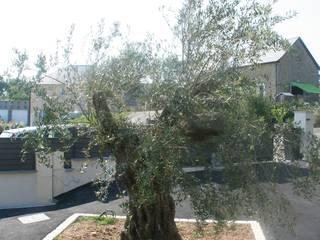 EURL OLIVIER DUBOIS สวน