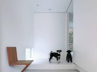 わんわんハウス モダンスタイルの 玄関&廊下&階段 の ARCHSOL DESIGN モダン