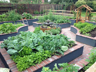 Kitchen Garden, Wirral: country  by Native Landscape Design, Country