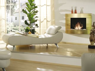 Kamin-Design GmbH & Co KG Living roomFireplaces & accessories Iron/Steel Amber/Gold