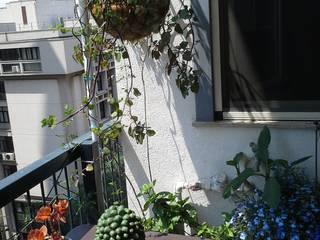 Piccolo giardino Balcone, Veranda & Terrazza in stile mediterraneo di Lucia Gitto Mediterraneo