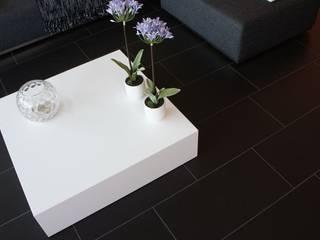 xCube:   von Variox GmbH