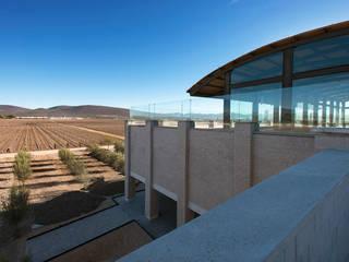 Viñedo De Coté por Serrano Monjaraz Arquitectos Moderno