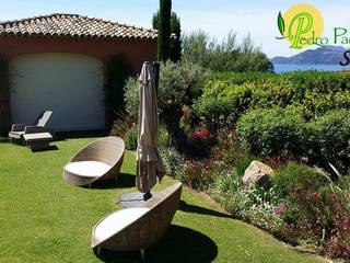 Entretien de jardin privée: Jardin de style  par Pedro Paysage SAP