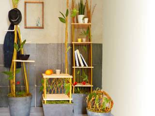 Helena Amalric Design HogarPlantas y accesorios