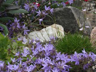 Projekty,  Ogród zaprojektowane przez Andreae Kakteenkulturen,