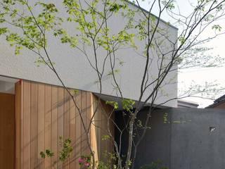 Balcones y terrazas modernos: Ideas, imágenes y decoración de 設計組織DNA Moderno
