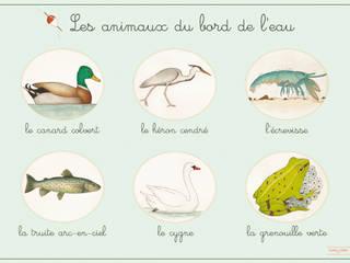 Affiche les animaux du bord de l'eau par Claire et Pierre éditions Classique