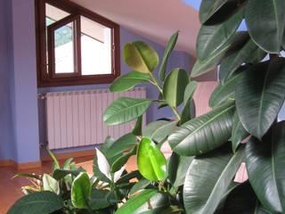 Classic style study/office by Tiziano Codiferro - Master Gardener Classic