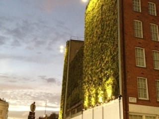 Rubens Hotel Project:   by Treebox vertical growers